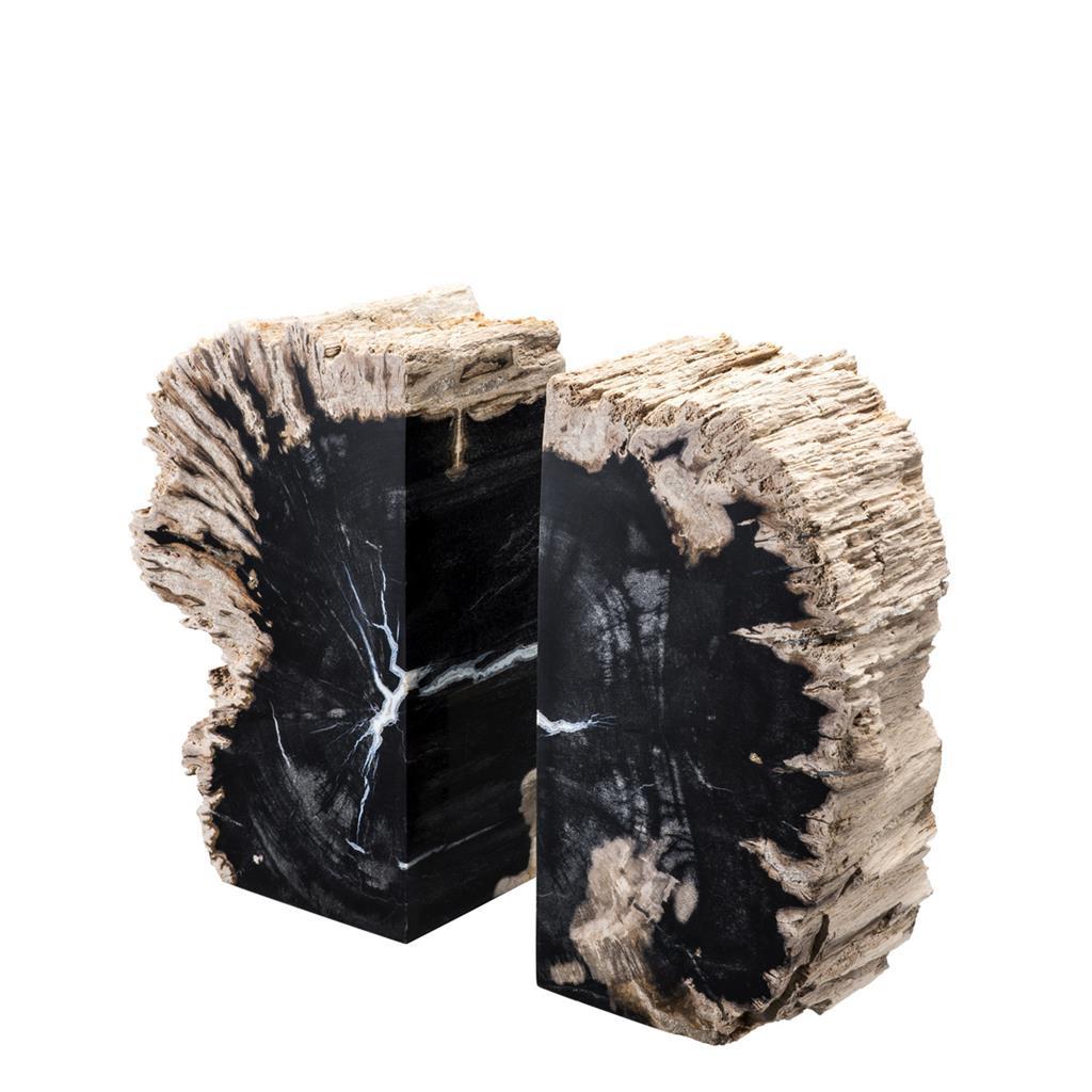 Buchstützen aus versteinertem Holz