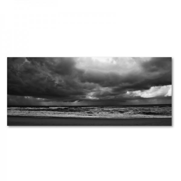 Niko Korte Fotoprint - Stormbird