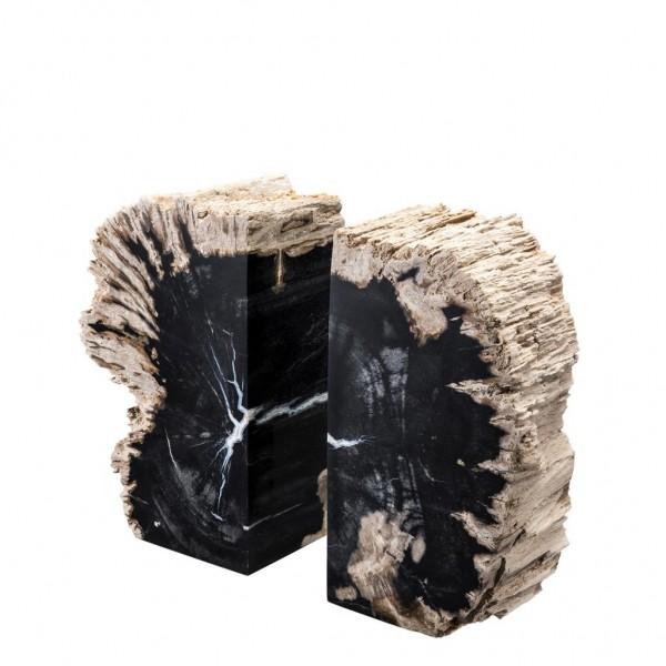EICHHOLTZ Buchstützen Opia versteinertes Holz
