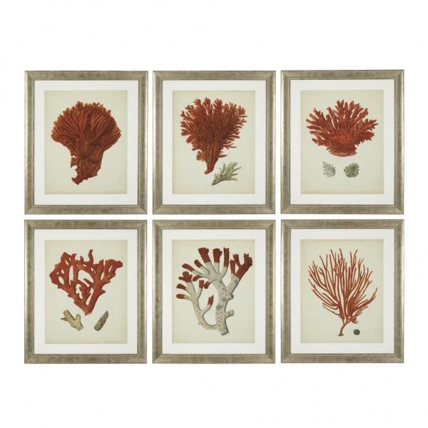 EICHHOLTZ Kunstdruck gerahmt Corals Set von 6 Stk.